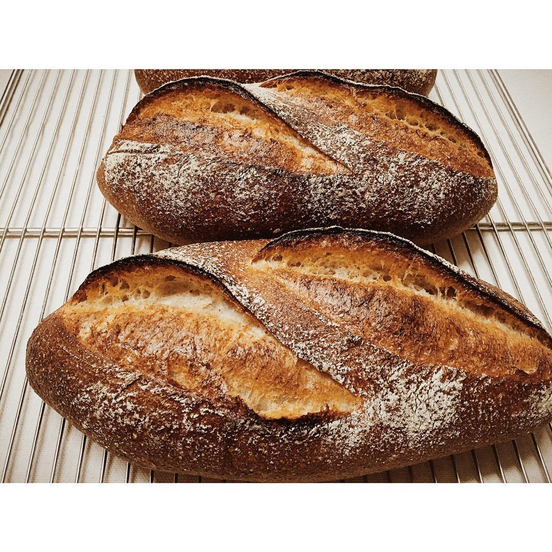 パン・オ・ルヴァンが焼き上がりました | OPAN オパン|東京 笹塚のパン屋