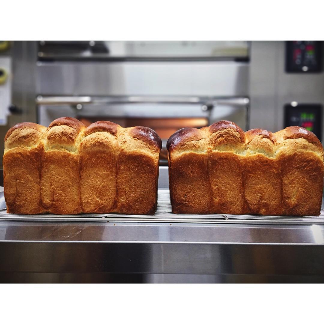 本日の食パン   OPAN オパン 東京 笹塚のパン屋